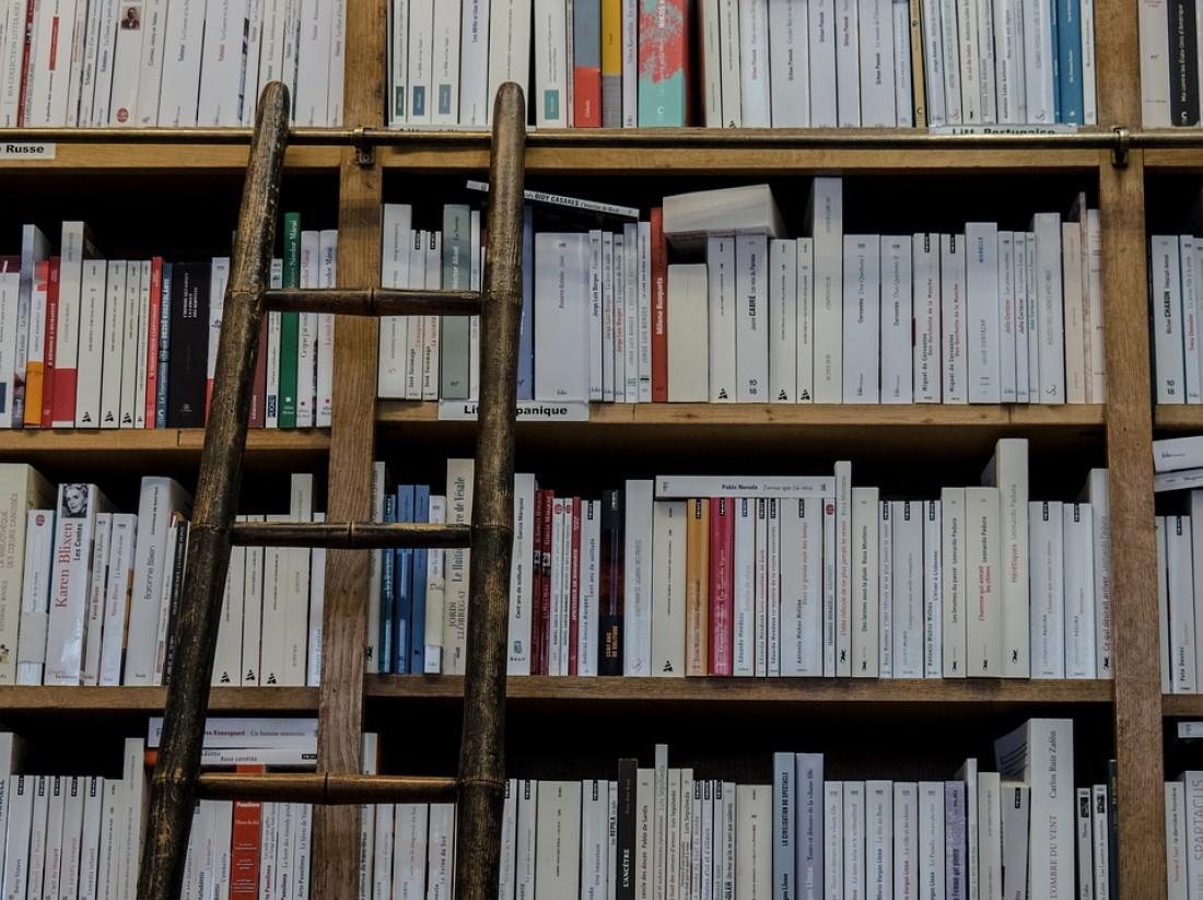 Mewujudkan Generasi Emas dengan Literasi